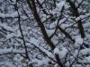 sne uden eksponeringskompensation